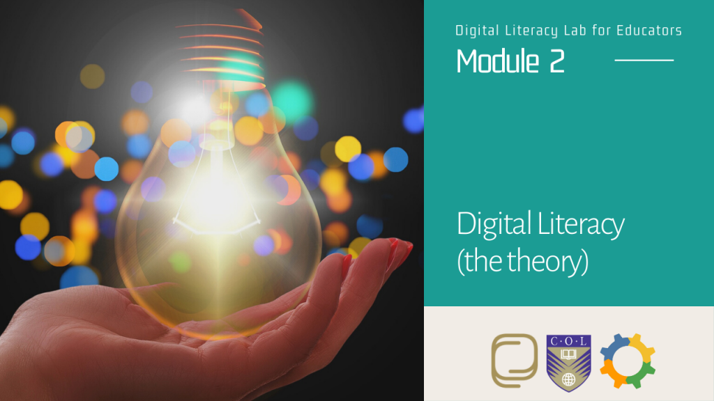11. Digital Literacy (the theory)