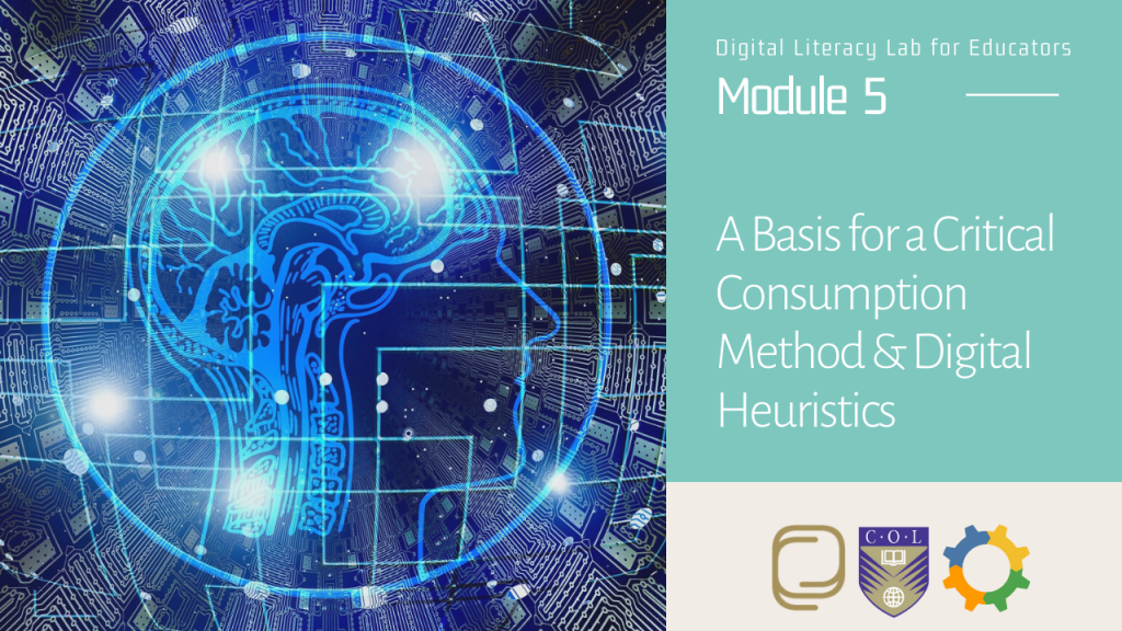 27. A Basis for a Critical Consumption Method and Digital Heuristics