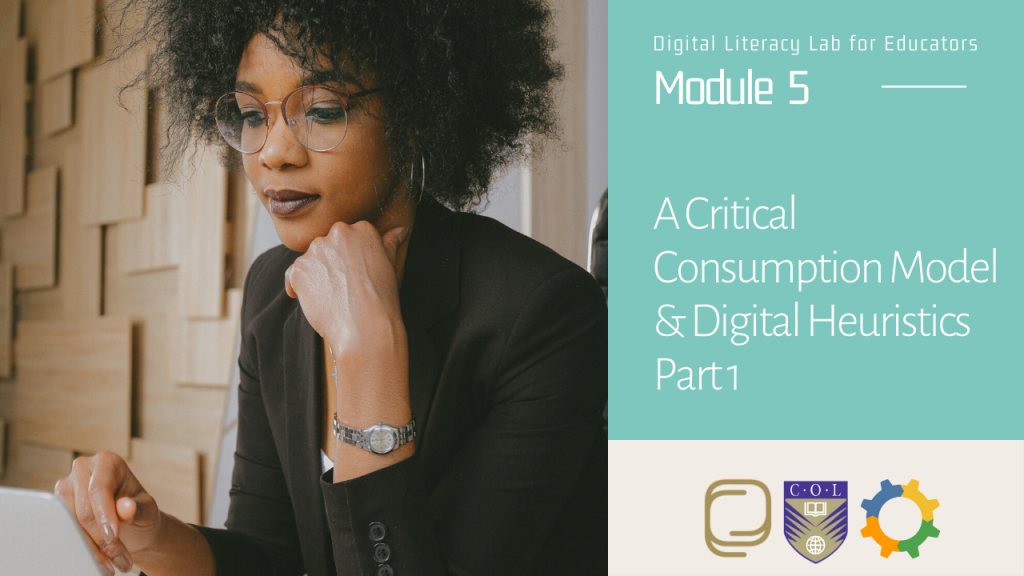 29. A Critical Consumption Model and Digital Heuristics (Part 1)